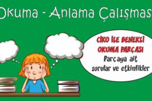 Türkçe Kitabı-1 Okuma Anlama Etkinliği-5