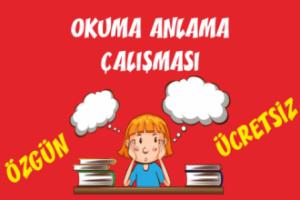 Türkçe Kitabı-1 Okuduğunu Anlama Etkinlikleri-8