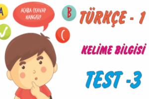 Türkçe Kitabı -1 Kelime Bilgisi (Test-3)