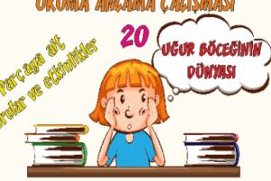 Türkçe 1 Okuma Anlama Etkinlikleri 20