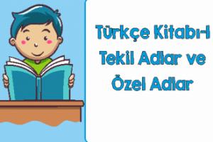 Türkçe 1 Tekil ve Çoğul Adlar