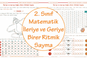 2. Sınıf Matematik İleriye ve Geriye Birer Ritmik Sayma