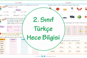 2. Sınıf Türkçe Hece Bilgisi