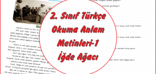2. Sınıf Türkçe Okuma Anlama Metinleri-1