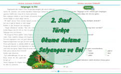 2. Sınıf Türkçe Okuma Anlama Metinleri-2