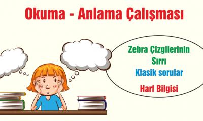 Türkçe Kitabı-1 Okuduğunu Anlama Etkinlikleri-3