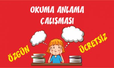 Türkçe Kitabı-1 Okuduğunu Anlama Etkinlikleri-7