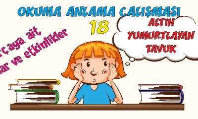 Türkçe 1 Okuma Anlama Etkinlikleri 18