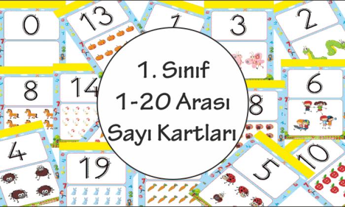 1. Sınıf Sayı Kartları