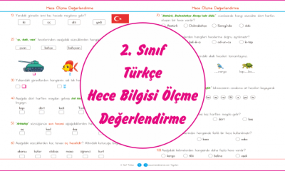 2. Sınıf Türkçe Hece Bilgisi Ölçme Değerlendirme