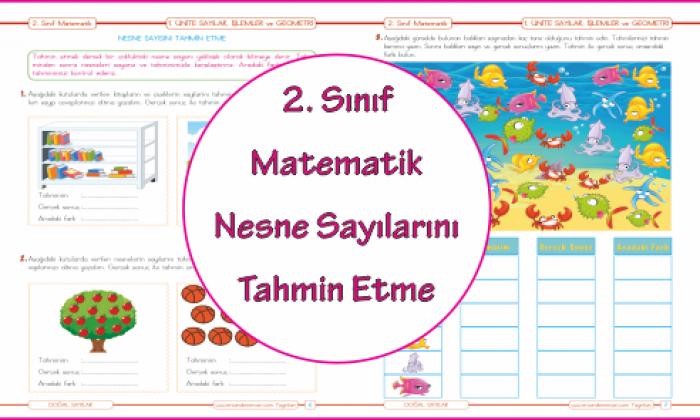 2. Sınıf Matematik Nesne Sayısını Tahmin Etme