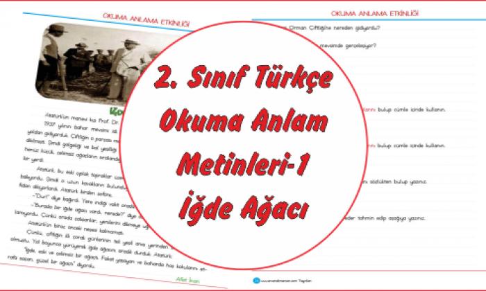 2 Sınıf Türkçe Okuma Anlama Metinleri 1 Ercan Akmercan