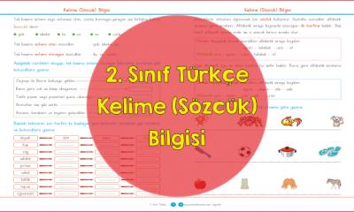 2. Sınıf Türkçe Kelime (Sözcük) Bilgisi