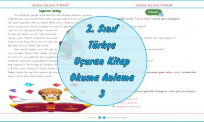2. Sınıf Türkçe Okuma Anlama Metinleri-3