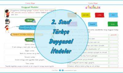 2. Sınıf Türkçe Duygusal İfadeler