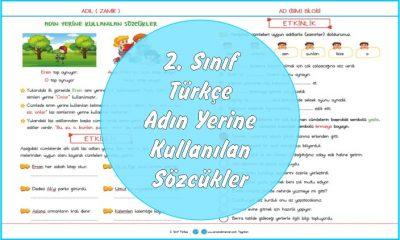 2. Sınıf Türkçe Adın Yerine Kullanılan Sözcükler