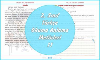 2. Sınıf Türkçe Okuma Anlama Metni – 11