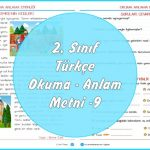 2. Sınıf Türkçe Okuma Anlama Metni – 9
