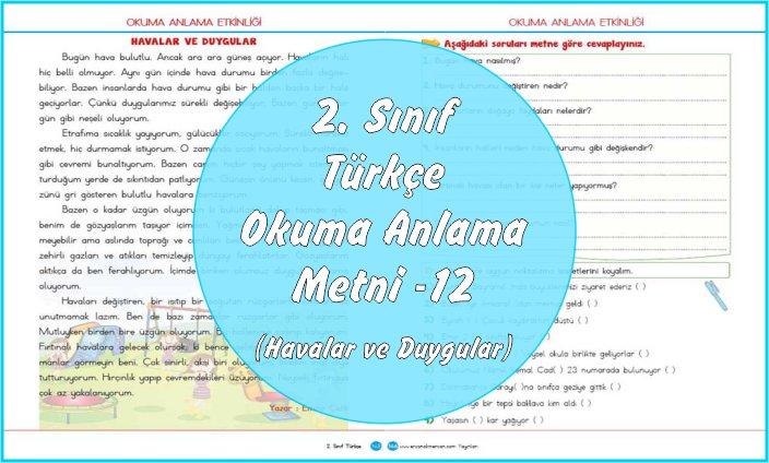 2. Sınıf Türkçe Okuma Anlama Metni – 12