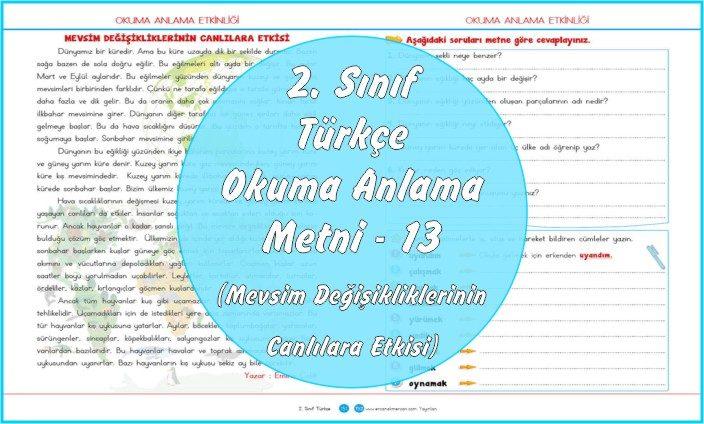 2. Sınıf Türkçe Okuma Anlama Metni - 13